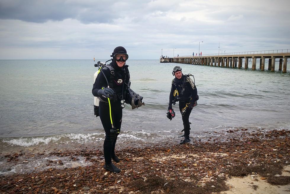 Beech divers